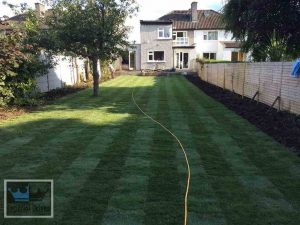 New lawn turfing installation